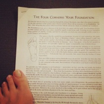 learning about FEET