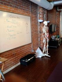 anatomy class...and Mr. Bones